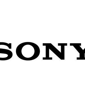 Batteries téléphone portable Sony